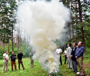 松葉を燃やした煙で今季のマツタケの作柄を占う関係者