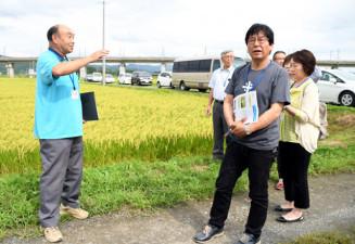 一関遊水地の田んぼを見学する参加者