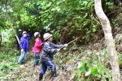 若い力で豊かな森に 東京の金融会社、4年ぶり奉仕活動