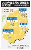 本県19年産米 やや良 9月作況