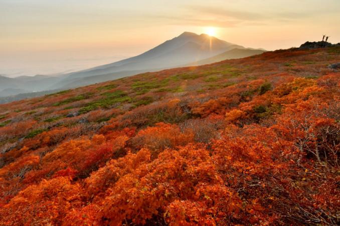 岩手山側から差し込む朝日を浴びて輝く紅葉=3日午前5時50分、三ツ石山山頂(八幡平市側から撮影)