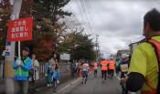 9千人が健脚競う 初の盛岡シティマラソン