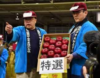 競りにかけられる江刺りんごのサンふじ特選28個。140万円の過去最高値が付いた