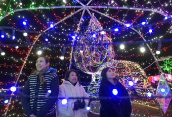 鮮やかな光が冬の夜を彩るイルミネーション=20日、雫石町・小岩井農場