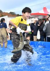 サケのつかみ取り体験で、暴れるサケを必死に手で捕まえる参加者