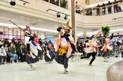 復興への演舞、力強く 中野七頭舞保存会、北上のパルで披露