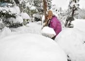 「今年一番」雪ずっしり 県内、白い冬本格化