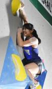 東京五輪予選、伊藤ふたばV クライミング女子複合