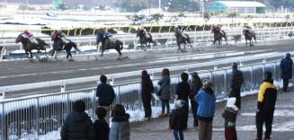 レースを再開した岩手競馬。ファンや関係者からは歓迎と薬物問題への不安の声が交錯する=7日、奥州市・水沢競馬場