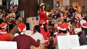 聖夜の気分でよい夜を 岩手医大でクリスマスコンサート