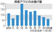 アワビ水揚げ、過去10年で最低 19年度第1期、水揚げ状況