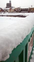 まとまった雪となった盛岡市内=27日午前8時40分ごろ、同市上ノ橋町