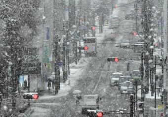 本格的な降雪となった盛岡市中心部。ふぶくなど視界不良になり、路面は悪化した=27日、同市菜園