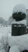 まちは真っ白、盛岡でまとまった雪 県内、昼から雨の予報