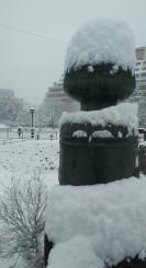 まとまった雪となった盛岡市内=8日午前8時30分ごろ、上の橋から撮影