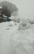 きょう大寒、盛岡は雪景色 一時視界不良に