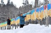 寒風まとい連なる滋味 西和賀で凍み大根作り