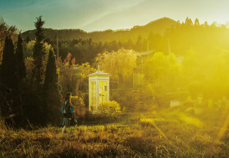 ベルリン国際映画祭のジェネレーション14プラス部門に出品される「風の電話」のイメージ写真
