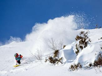 自然の地形を滑り降り、技術などを競うフリーライドスキー(freerideworldtour.com提供)