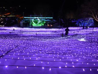 約6万個のLEDが幻想的に輝く石神の丘美術館のイルミネーション