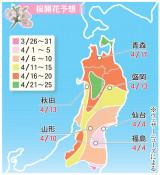 県内の桜、ことしはいつ開花? ウェザーニュース最新予想