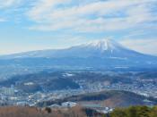 世界中に○○富士 通称含めて400以上、故郷日本思い命名も