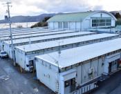 仮設住宅を防災体験施設に 陸前高田市、宿泊や見学を想定