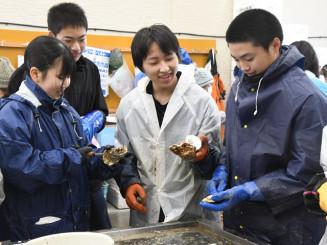 カキの殻むきに挑戦し、笑顔を見せる生徒