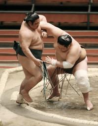 剣翔に寄り切りで敗れた錦木(左)=エディオンアリーナ大阪