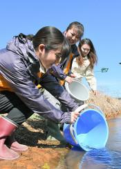 サケの成長を願い稚魚を放流する参加者たち