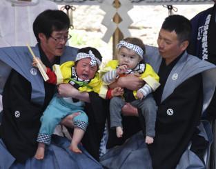 多彩な表情を見せる豆力士=2019年5月、花巻市東和町