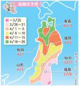 桜開花、記録的早さか 盛岡は来月9日、北上11日の予想