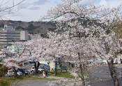 巽山公園(久慈・中町)