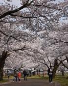 岩手公園(盛岡・内丸)