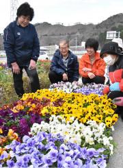 花苗を見て笑顔を見せる高村英世さん(左から2人目)、民子さん(左)夫妻と、おおちゃん花くらぶのメンバー