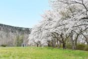 愛宕山公園(花巻・大迫)