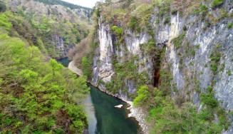 高くそびえる岩壁と新緑の砂鉄川。猊鼻渓は初夏の装いへと移る=一関市東山町(本社小型無人機から撮影)