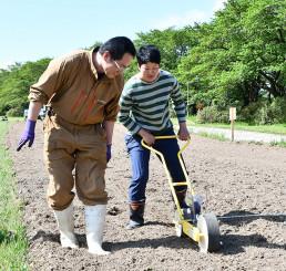 手押しの機械を使いヒマワリの種を植える佐藤孝志代表(左)ら。夏には大輪の花が展勝地を黄色に染める