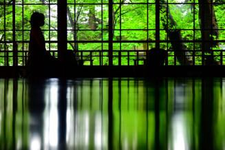 鮮やかさを増し、漆黒に映える緑=23日、盛岡市清水町・南昌荘(報道部・山本毅撮影)