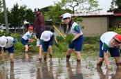 地域と学んだ米作り 本年度閉校の紫波町・水分小