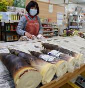 タケノコ出荷 ようやく 一関の3地域、原発事故の規制解除