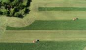 草原の地上絵整然と 盛岡・家畜改良センター岩手牧場