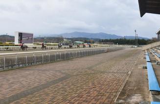 無観客での開幕となり、静かな競馬場でレースを繰り広げる競走馬=4月、奥州市・水沢競馬場