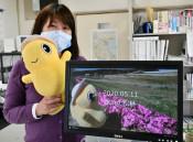 野田の風景 全国に届け 村観光協会、SNSで動画を公開