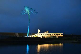 青色にライトアップされた奇跡の一本松とユースホステル