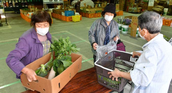 日曜朝市で新鮮な野菜などを買い求める人たち