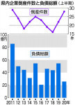 県内倒産 震災時に次ぐ水準 上半期28件、前年比6件増