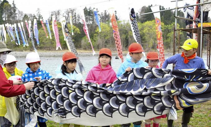 雫石川を泳ぐこいのぼりの掲揚を手伝う御所小児童