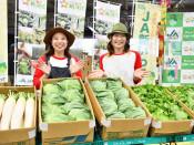 岩手の夏野菜 出荷最盛期 新岩手農協がPR