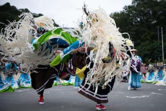 きらびやかな衣装で大胆に舞う臼沢鹿子踊保存会のメンバー(同保存会提供)